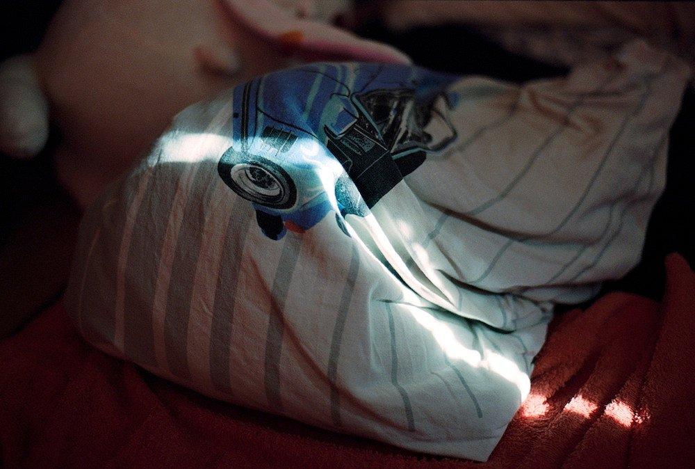 agnes-tanuki-pillow.jpg