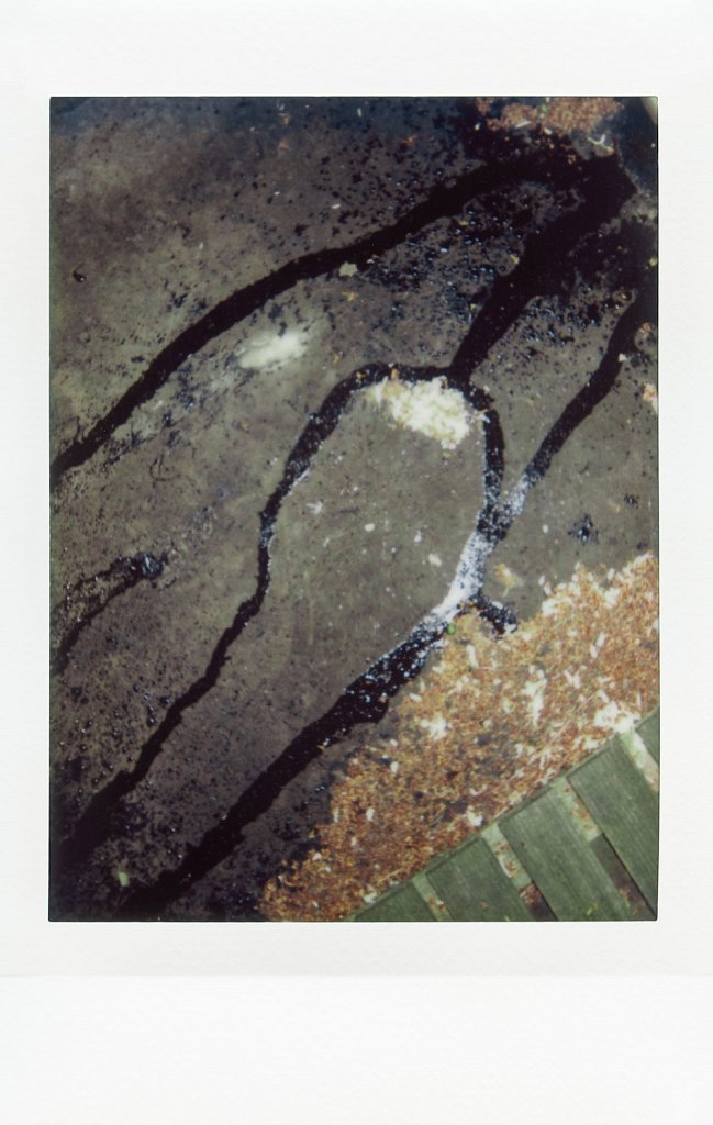 agnestanuki-erkundung-08.jpg